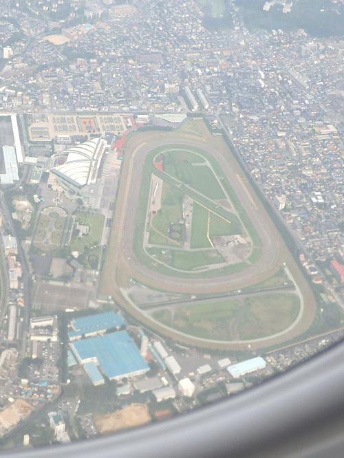 14阪神競馬場
