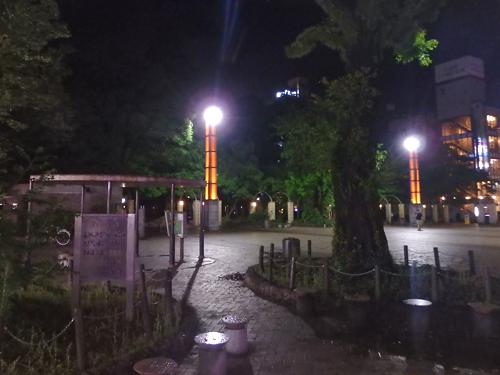 02ジャングル公園