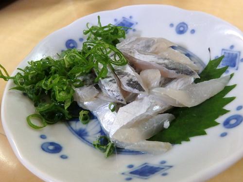 24太刀魚