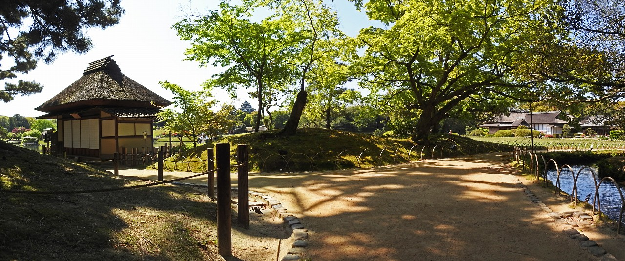 s-20160420 後楽園今日の新緑の園内ワイド風景 (1)