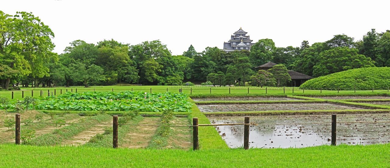 s-20160608 後楽園今日の午後の井田の様子ワイド風景 (1)