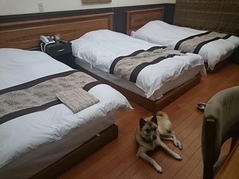 4どこで寝る?