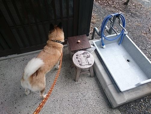 2足洗い場