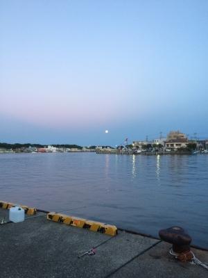 三崎港の夜明け