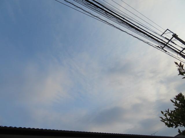 2016_05150123.jpg