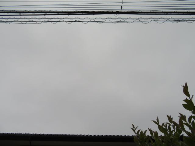 2016_05160003.jpg
