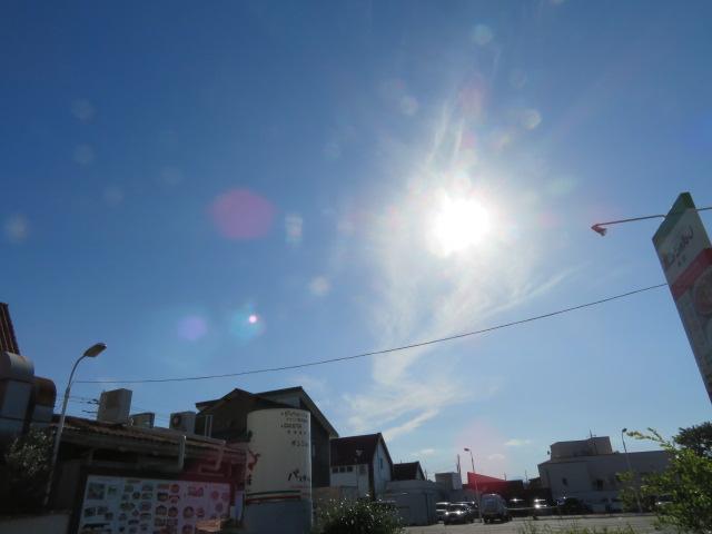2016_06010024.jpg