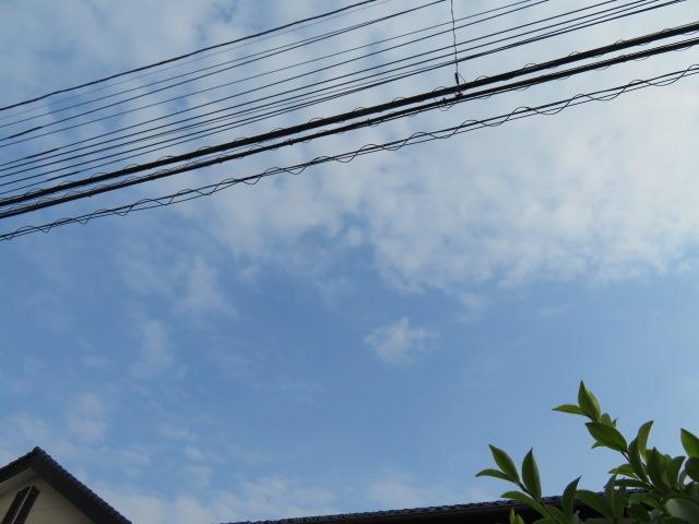 2016_06080043.jpg