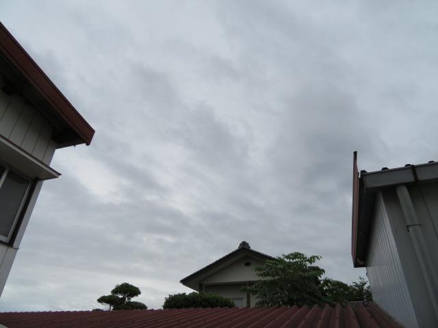 2016_06130009.jpg