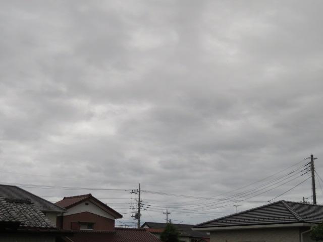 2016_06130013.jpg