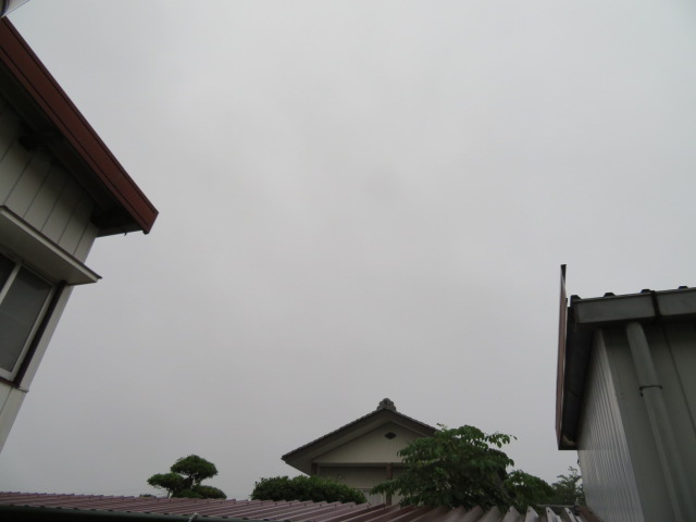 2016_06160001.jpg