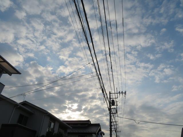 2016_07200005.jpg