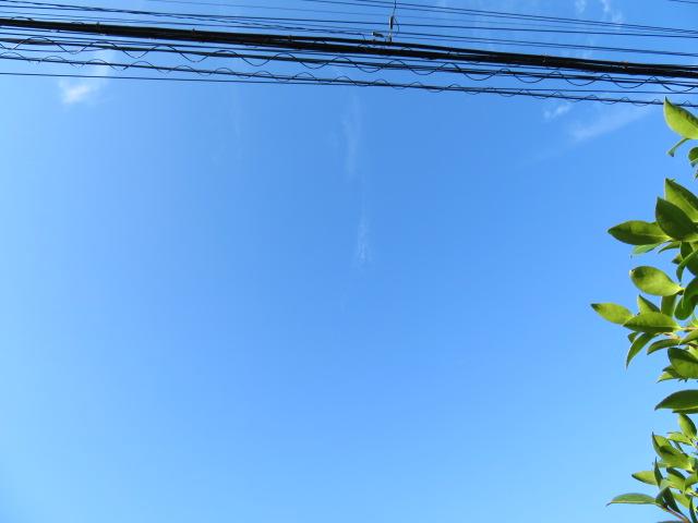 2016_07300005.jpg