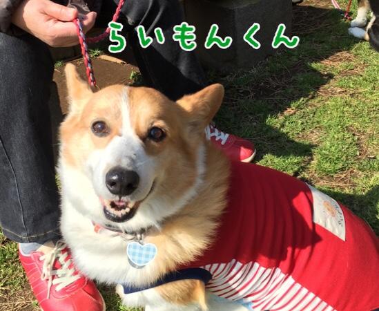 fc2blog_20160522204259615.jpg