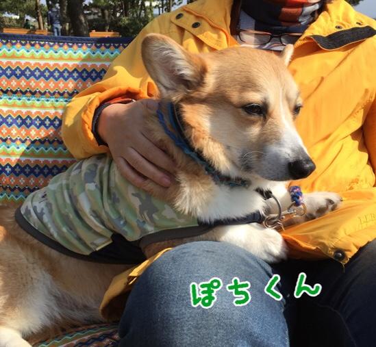 fc2blog_20160522204412660.jpg