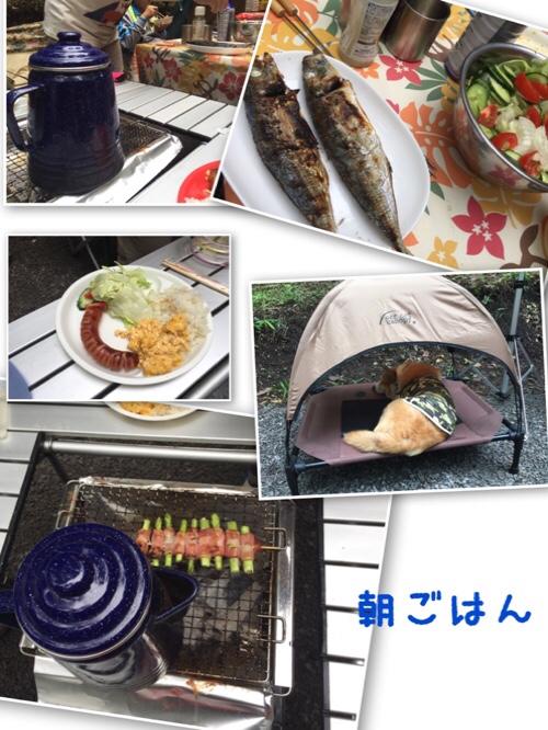 fc2blog_20160808100623389.jpg