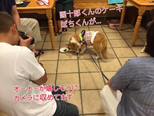 fc2blog_20160810172414076.jpg