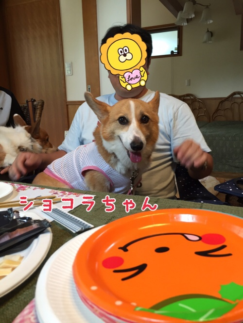 fc2blog_20160812163842d74.jpg