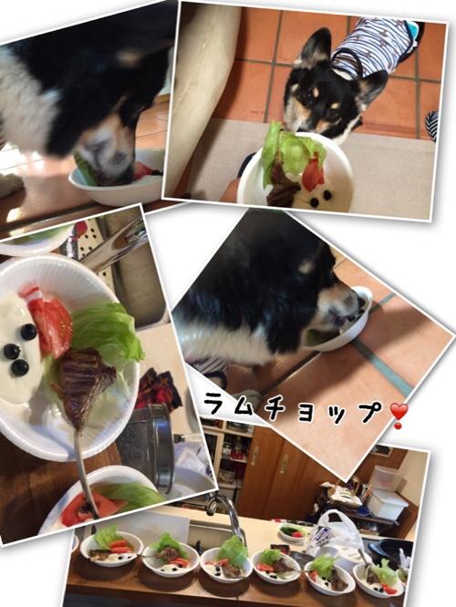 fc2blog_201608121642239e4.jpg