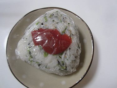 20160415梅青菜