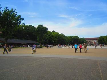 20160611 (1)上野公園