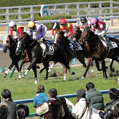 【競馬ネタ】毎年クラシックに一頭はいるよなーって馬の特徴