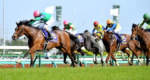 【ダービー】競馬専門紙「優馬」のダービー予想オッズ