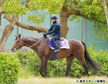 【競馬】Mデムーロ「僕が今まで乗った馬でモンスターと感じたのはリオンディーズとドゥラメンテの2頭だけ」