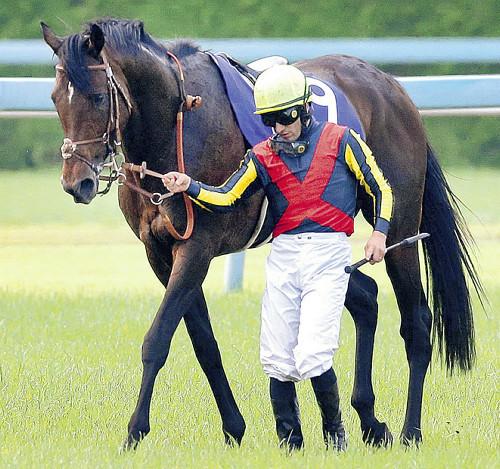 【競馬】ドゥラメンテ、パーフェクト連帯G1馬の仲間入りを果たす