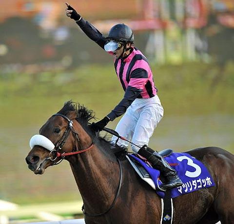 【競馬ネタ】馬名7文字のG1馬を挙げてさっさと寝よう!(但し伸ばしの ー が入ってない馬)