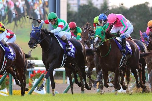 【競馬】今年の有馬記念がやばい件について