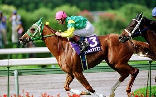 【競馬】「未完の大器」で思い付く馬は?