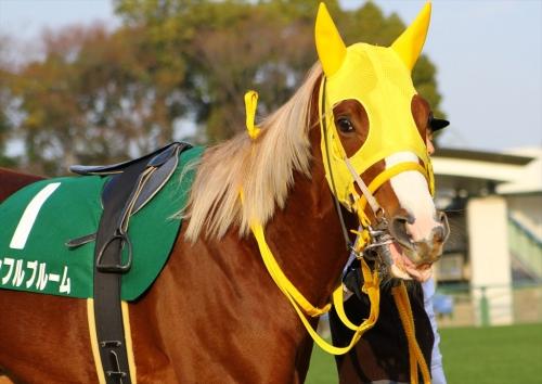 【競馬ネタ】1番リーゼントが似合いそうな馬を挙げた奴が優勝