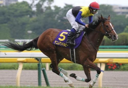 【競馬】デニムアンドルビー秋に復帰へ!エリザベス女王杯かJC目標