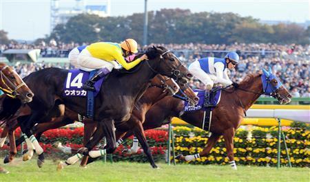 【競馬】3大ライバル→「オグリ・タマモ」、「オペ・ドトウ」、