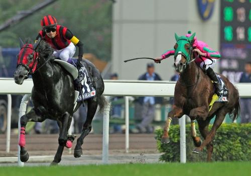 【競馬】現役馬で最も人気ある馬って?