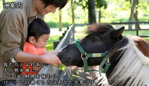 【競馬】北海道の牧場巡りに行くんだが