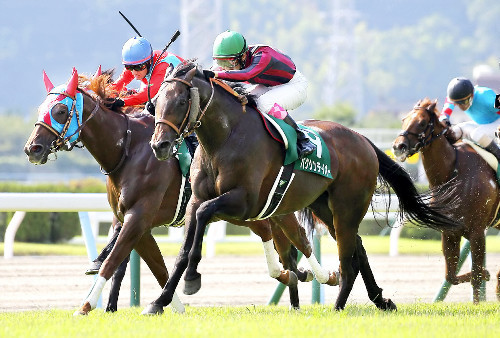 【競馬】北九州記念&札幌記念で軸にしたらセンス無しの馬TOP3
