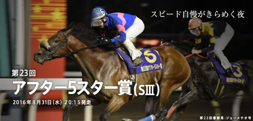 【地方競馬】アフター5スター賞(S3) 大井 ダート1200M 16頭立て