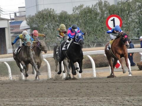 【競馬】において「スピード」の定義がよく分からない件.jpg