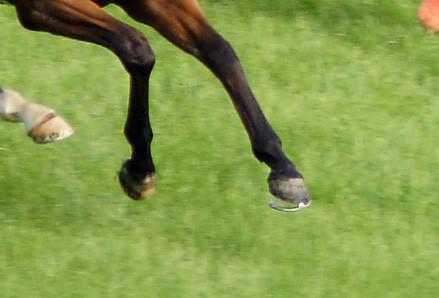 【競馬】日本馬落鉄しすぎワロタwwwwwwwwwwwwwww