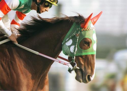 【競馬】生き返ってほしい馬を一頭だけ挙げろ