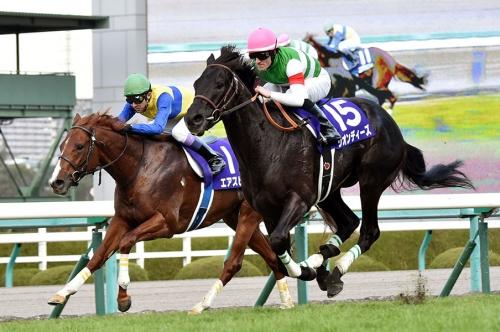 【競馬】リオンディーズに異変【神戸新聞杯】