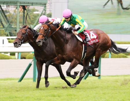 【神戸新聞杯】サトノダイヤモンドはなんで僅差勝利だったの?