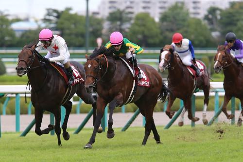 【神戸新聞杯】5着エアスピネル武豊「初めてこの馬らしい脚が使えなかった。京都で巻き返したい」