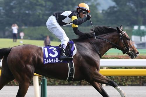 【競馬】天才、戸崎圭太の代表馬って