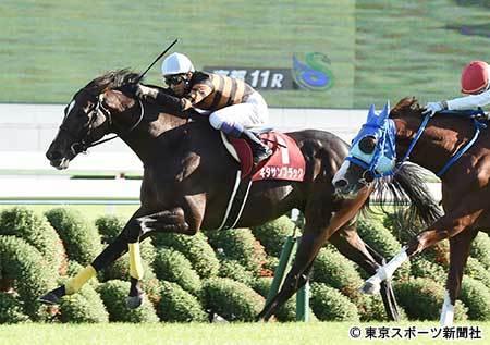 【競馬】キタサンブラックさん、騎手の都合で天皇賞春秋連覇目指せず