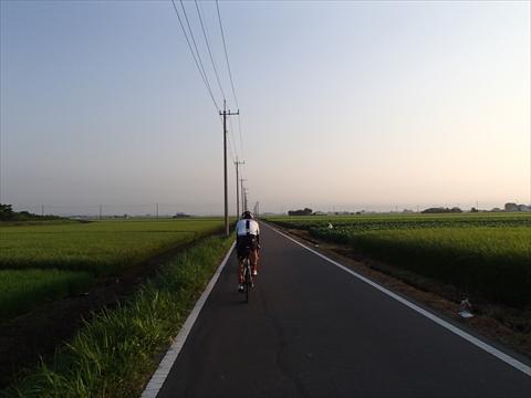 S16-P8060015.jpg