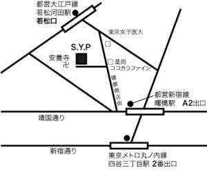 Pmap.jpg