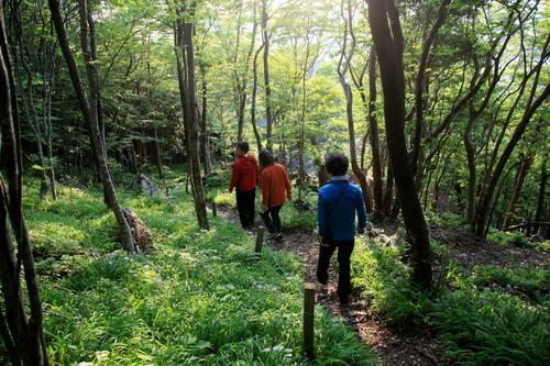 IMG_9348岳人の森朝